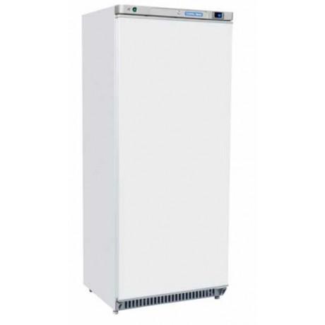 Armoire réfrigérée négative 600 Litres